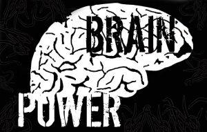 'Brain Power' overlaid upon a white brain.