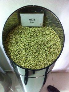 pellet hops in a bin ready to use in basic brewing
