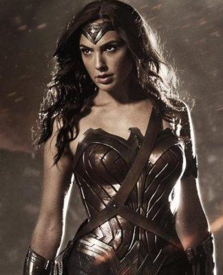 Wonder Woman looking unamused.