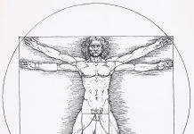 A diagram of the Vitruvian Man