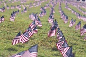A field of American flags sticking in the ground as part of Memorial Day