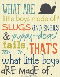 """WHAT ARE little boys made of? SLUGS aND SNaILS & puppy-gods' tails, THAT'S what little boys aRE madE of."""