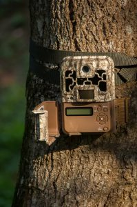 Trail camera on a tree used for tracking the animals you are hunting