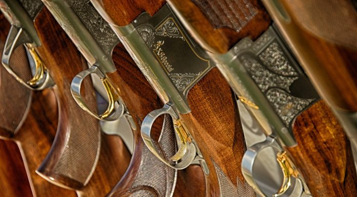 Close-up shot of a row of engraved shotguns on a rack