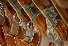 Shotguns lined up.