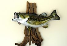 Mounted Largemouth Bass